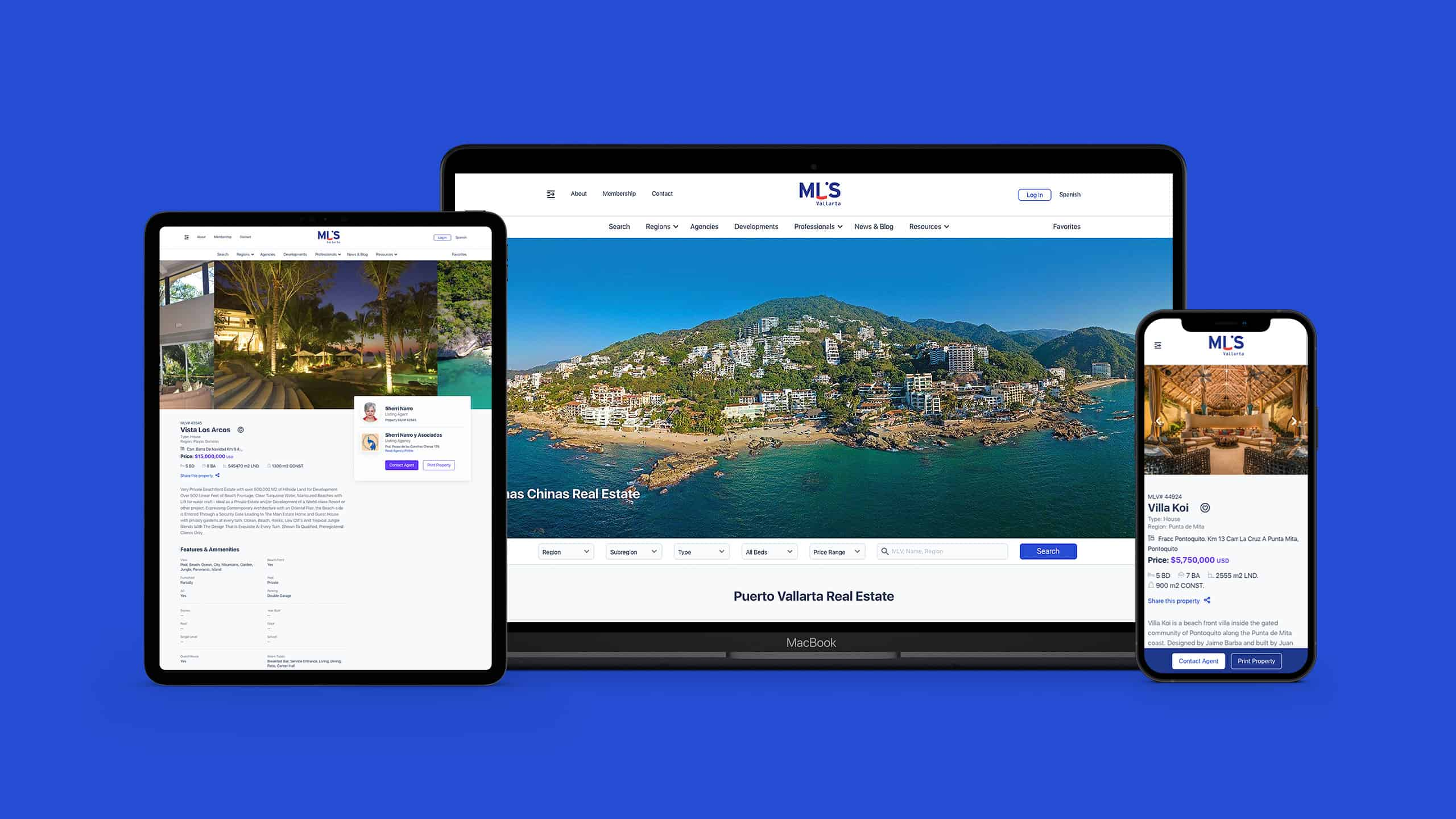 Website Design for MLSVallarta